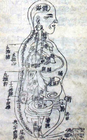 Ido Nichiyo Komoku (Zofuzu)