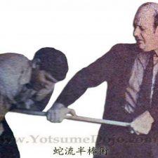 Mr D Hanbo Tsuki